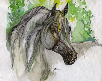 Grey arabian horse, equine art, equestrian, horse portrait,  original pen and watercolor painting