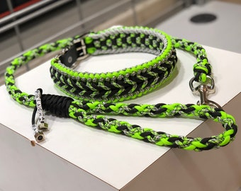 Leash and Collar Combo (included free custom dog collar)