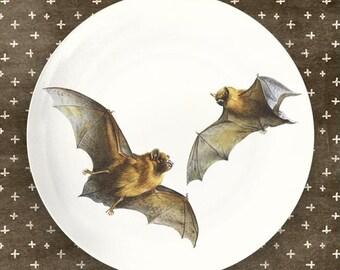 bats I plate