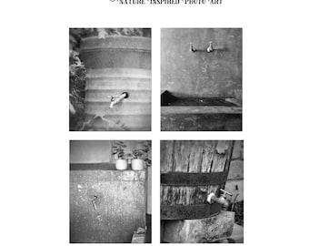 Bathroom Photo Set, Laundry Room Photo Prints, Water Barrel, Cement Laundry Sink Prints, Bath Decor Photo Set, Black and White Bath Fine Art