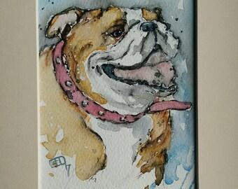 Bulldog watercolour  painting, dog art,  pet portrait original artwork, a one off watercolour painting of an English bulldog