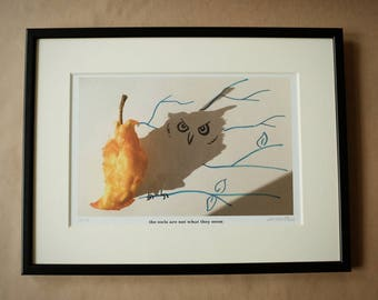 Signed PRINT – the owls are not what they seem