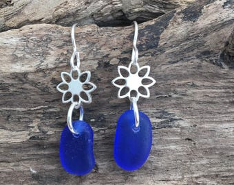 Scottish Sea Glass Daisy  Frosted cobalt Seaglass and sterling silver earrings