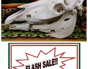 FLASH SALE !! Favorite this listing to be notified of Sales & Specials-- as they 1st happen!