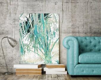 Blue Palm Calm