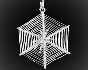 Spider pendant on its Web