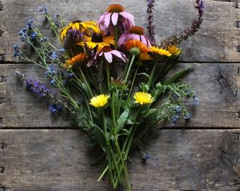 Wildflower Seed Mixture, organic flower seeds, heirloom seeds, wildflower seeds, flower garden, gardener, organic wildflower seeds