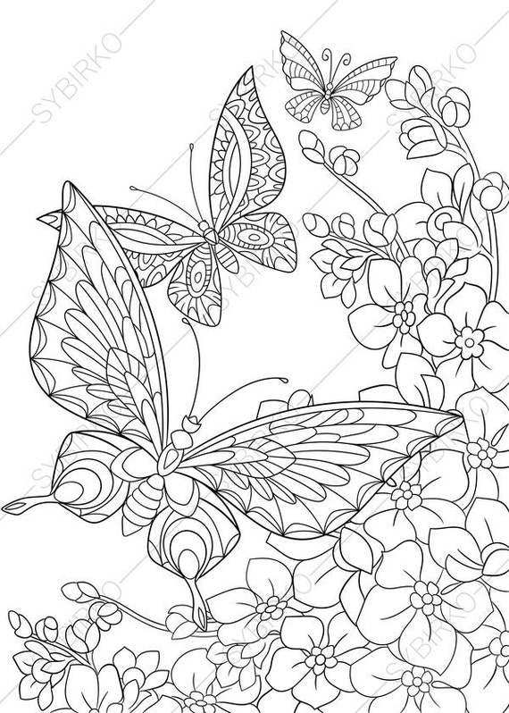 Butterfly and Spring Flowers. 3 Coloring Pages. Animal