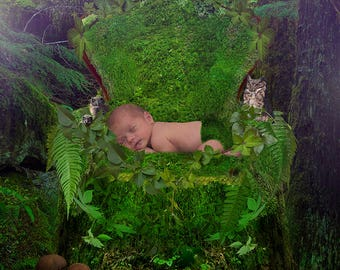 Moss Chair Background
