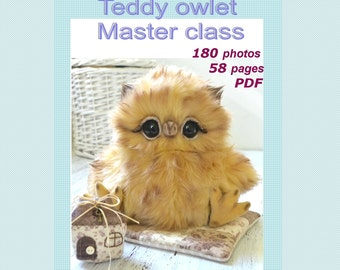 Teddy Owlet master class  in English