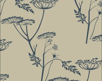 206 Queen Anne's Lace