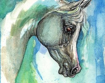 Grey arabian horse, equestrian portrait, equine art,  original pen and watercolor painting