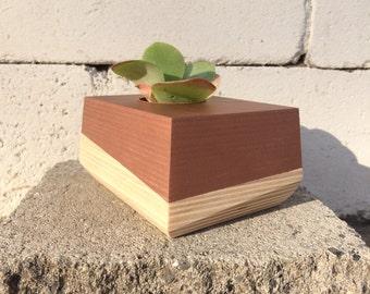Desk Top Succulent Planter