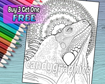 Iguana - Adult Coloring Book Page - Printable Instant Download