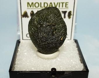 MOLDAVITE Tektite Meteorite Impact Glass In Mineral Specimen Box From Czech Republic With Moldavite Tektite Writing Label And Mini Card