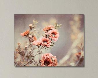 Nature Photography Canvas Print, Canvas Wall Art, Pink Peach Blossoms, Sage,  Natural Decor , Floral Canvas Art