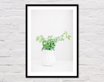 Ivy Plant Print, Botanical Print, Botanical Art, Plant Printable, Minimalist Art,, Plant Photo, Leaf Print, Modern Art, Digital Download