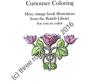 Curiouser Coloring - Another Printable Instant Download Coloring Book