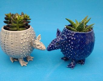 Large Armadillo, Planter, Succulents, Air Plants,  Texas, Quirky, Joyful Gift