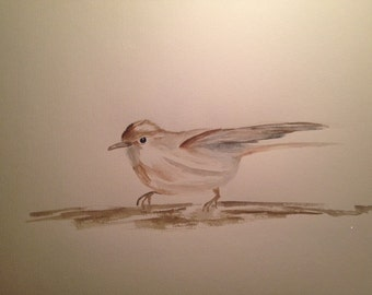 Original Watercolour Painting - garden Warbler