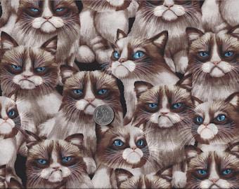 Grumpy Cat I Spy Internet Meme Cats Fabric By the Fat Quarter