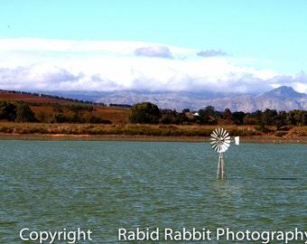 Swimming Windmill