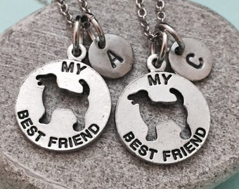 Best friend necklace, my best friend necklace, dog best friend charm, animal necklace, personalize necklace, friends, initial necklace, BFF