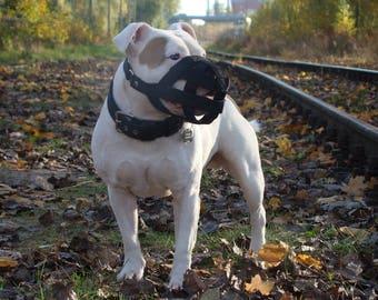 Pitbull Amstaff muzzle, dog muzzle, nylon straps