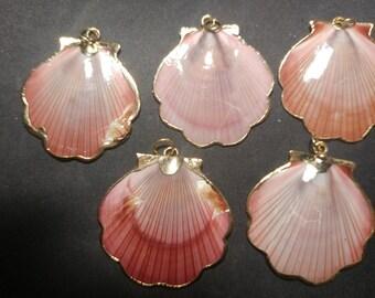 Vintage gold edged Pink Scallop Shells pendants. (1060453)