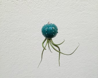 Cactopus little air plant tillandsia vase cactus shaped teal blue glazed ceramic vase (air plant not included)