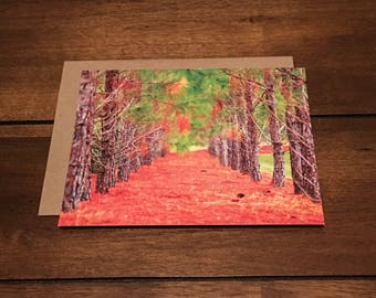Note Card | Colors of Fall