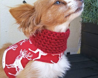Infinity Dog Scarf, Dog Neck Warmer, Dog Crochet Scarf, Dog Scarf, Dog Accessories, Dog Apparel, Small Dog Clothes, Dog Gift