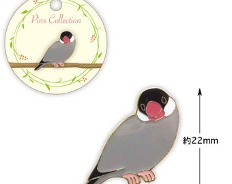 Java Sparrow Pin Bird Pin  (Price depends on order volume.)