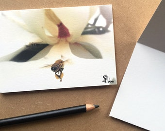 bee photo notecard, magnolia note card set, spring flower invitation, 5 blank cards and envelopes