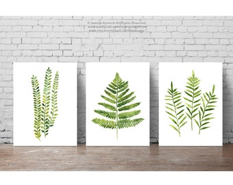 Fern Watercolor Painting set 3 Ferns Kitchen Art Print, Botanical Leaf Wall Decor Abstract Leaves Illustration Green Home Garden, Forest Art