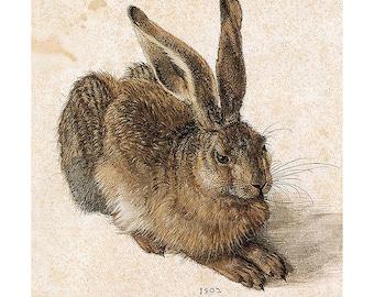 Bunny Rabbit Card - Albrecht Durer Hare Vintage Image Greeting Card