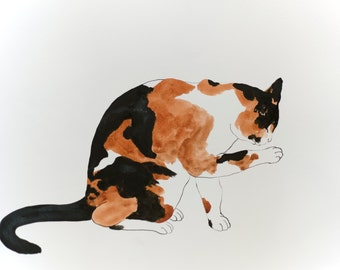 Calico - original watercolor ink painting