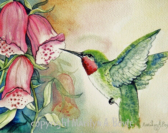 PRINT - RUBY THROATED Hummingbird: flower, foxglove, garden, bird, nature, wings, watercolor