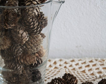 100 small pine cones , larch pine cones,lot of pine cones, wedding decoration, cottage chic , home decoration DYE craft supplies