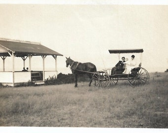 """Vintage Snapshot """"On The Bluff"""" Horse-Drawn Buggy With Mother Father & Baby Victorian-Era Rural America Small Mini-Photo Old Found Photo"""