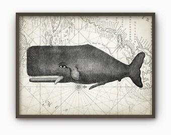Whale Wall Art Poster - Marine Biology Print - Whale Chart Print - Nautical Poster - Bathroom Decor - Whale Nautical Map Poster (B91)