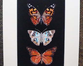 Butterfly Picture Butterfly Wall Art Butterfly Decor Butterfly Furnishing Butterfly Artwork Vintage Style Butterflies Butterfly Collection