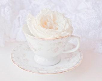 Tea Time photo Digital Download Fine Art Photography teacup white rose print still life wall art decor