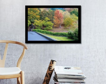 Nature Stock Photography / Mount Lofty Botanic Gardens, Australia
