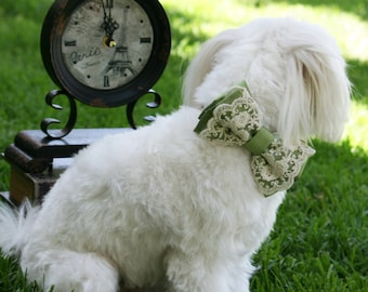 Green Lace Dog Bow Tie Collar, Spring wedding, Pet accessory, boho, Victorian