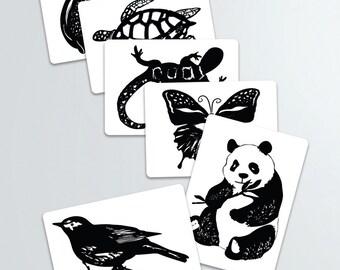 Art animalier contraste Cartes-pdf télécharger la version Solde Blanc et noir