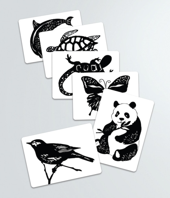 Black and white contrast animal art cards baby shower