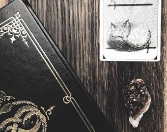 Black Velvet Perfume - Natural Botanical Fragrance - Roll On Vegan Oil Perfume 1/3 oz.