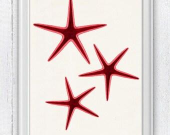 Starfish in red trio seaside print -Ocean life Print wall decor , sea life print -Marine  sea life illustration A4  SAS045