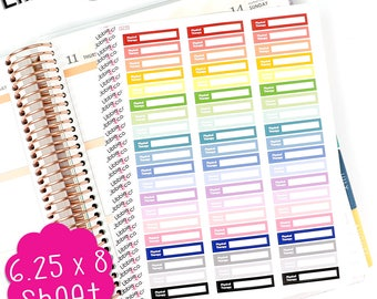 LS220 Pale Physical Therapy Appointment Boxes, Set of 60, PT, Injury, Strength, Reminder, Special Needs, Happy, Erin Condren Planner!!!